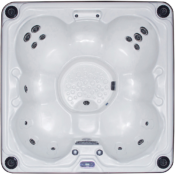 Viking Spas Regal P Hot Tub