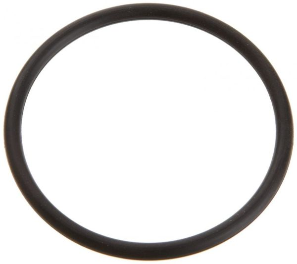 Pentair Superflo Pump 6020018 Adaptor O-ring