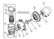 Pentair Dynamo Pump - Parts Diagram