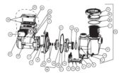 Pentair IntelliFlo Variable Speed Pump - Parts Diagram