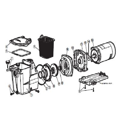 Hayward Super Pump - Parts Diagram